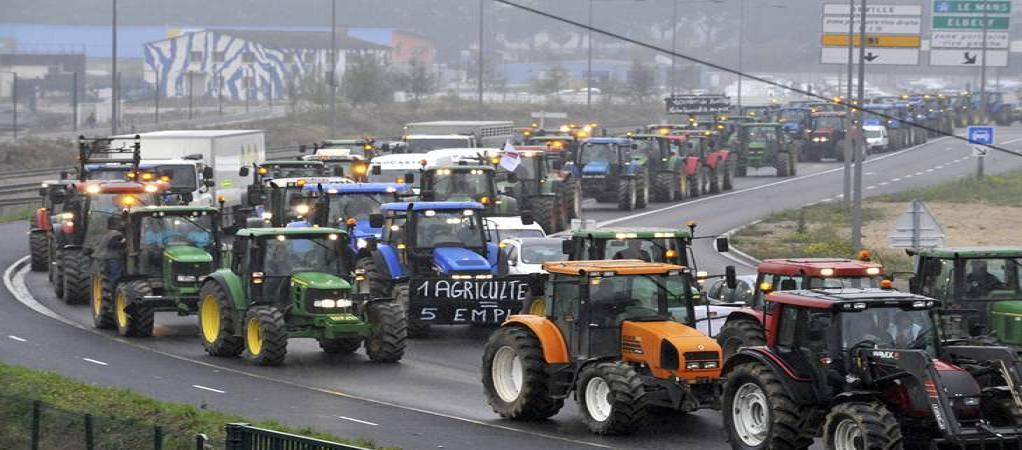 Copa-Cogeca проведет акцию протеста в Брюсселе 7 сентября